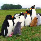 オリジナル制作ぬいぐるみ 鳥 ペンギン 全18種