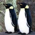 オリジナル制作ぬいぐるみ 鳥 エンペラーペンギンS