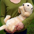 オリジナル制作ぬいぐるみ 哺乳類 ラッコ赤ちゃん(体重再現)
