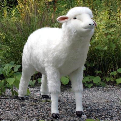 オリジナル制作(オーダーメイド)ぬいぐるみ 羊-2