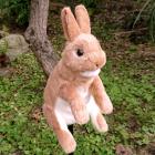 オリジナル制作あやつり人形 Cedar(ネザーランドドワーフ)